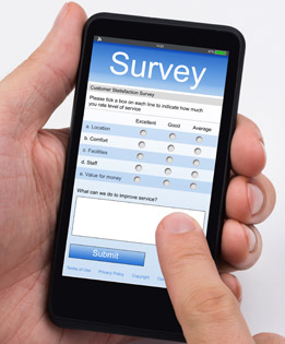mobile survey system